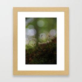 Abstract Nature I Framed Art Print