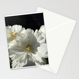 Pristine Stationery Cards