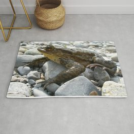 Bufo Bufo Toad Lounging On Stones Rug