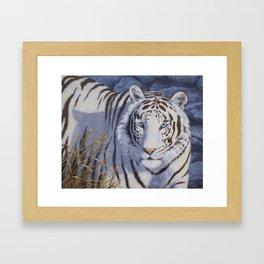 White Tiger with Blue Eyes Framed Art Print