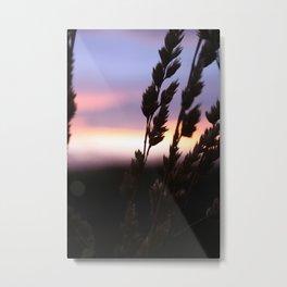 Summer Breeze. Metal Print