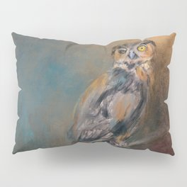 One Eye On You Pillow Sham
