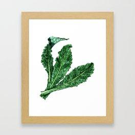 Lacinato Kale Framed Art Print