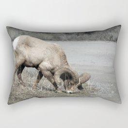 Forager Rectangular Pillow
