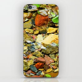 A Colorful Creek, Glacier National Park iPhone Skin