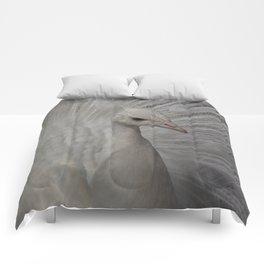 Paon blanc Comforters