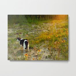 this miss in sunset I Metal Print