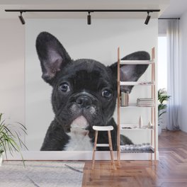 French bulldog portrait Wall Mural