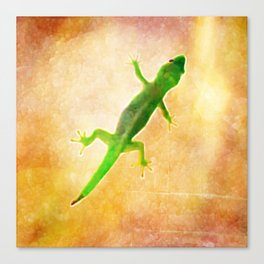 Sunbaking Gecko Canvas Print