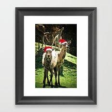 Tis The Season - Reindeer Framed Art Print