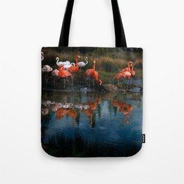 Flamingo Convention Tote Bag