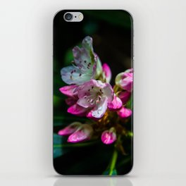 Rhododendron iPhone Skin