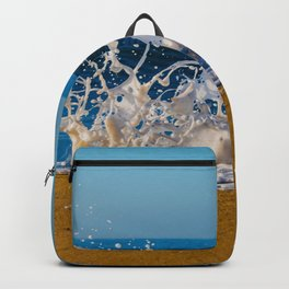 Wedge Wash II Backpack