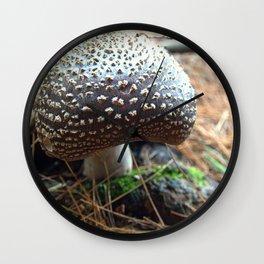 Mushroom D Wall Clock