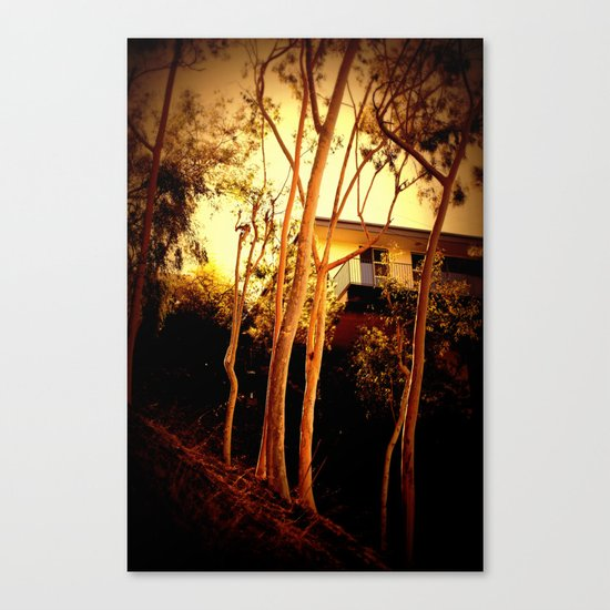 sunset mystery Canvas Print