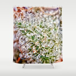 Skywalker OG Kush Strain Frosty Buds Calyxes Trichomes Close Up View Shower Curtain