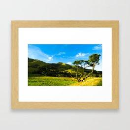 Wairarapa Framed Art Print