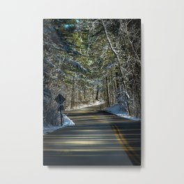 Early Winter in Itasca State Park Metal Print