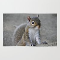 squirrel Area & Throw Rugs featuring Squirrel by Charlene McCoy