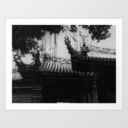 FLUTED - ILFORD Delta 3200 Professional (120 film) Art Print