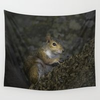 squirrel Wall Tapestries featuring Squirrel by Judith Lee Folde Photography & Art