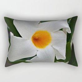 ATTRACTOR Rectangular Pillow