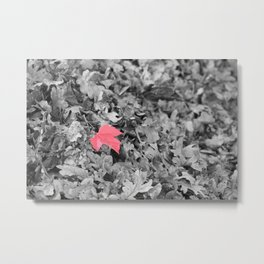 Pop of Red Metal Print