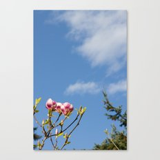 Sky flowers Canvas Print