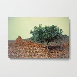 Tree in ruins Metal Print