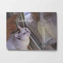 Cat Reflected: Look Up & Reflect Metal Print