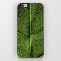leaf iPhone & iPod Skins featuring LEAF by Ylenia Pizzetti