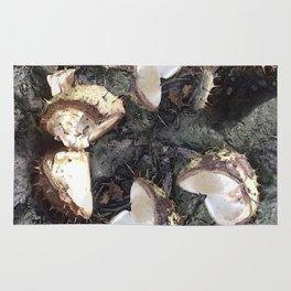 Autumn shells Rug