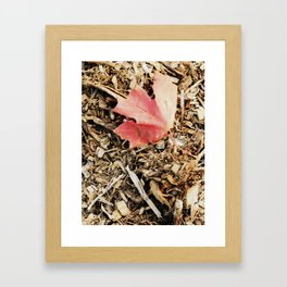 in my time of dying Framed Art Print