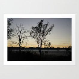 Misty Trees Art Print