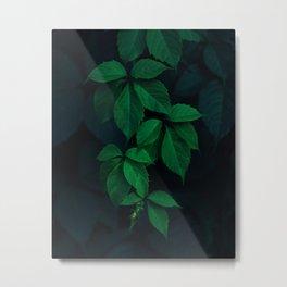 Leaves by Rodion Kutsaev Metal Print