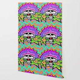 Pink Sombrero Wallpaper