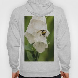 Bumblebee in the campanula Hoody