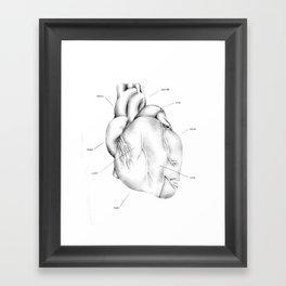 Being Human Framed Art Print
