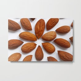 almonds seeds Metal Print