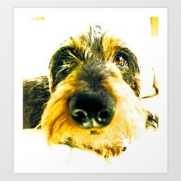DACKEL DOG#8 Art Print