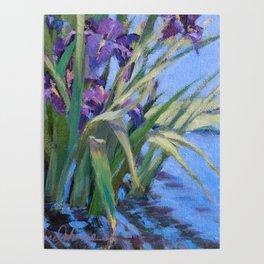 Sun Day—Iris Poster