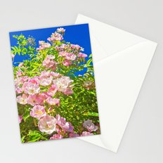Sun Soaked Roses Stationery Cards