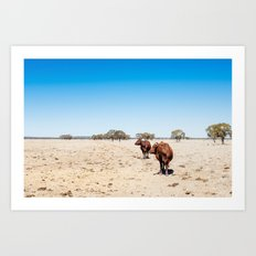 2 cows walking Art Print