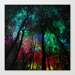 blissful forest Canvas Print