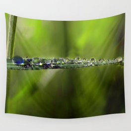 A Riot of Early Morning Watrlens Dewdrops Wall Tapestry