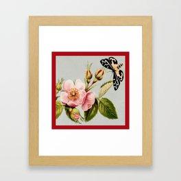 Flower and Moth Framed Art Print