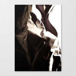 Garbage Landscape 1 Canvas Print