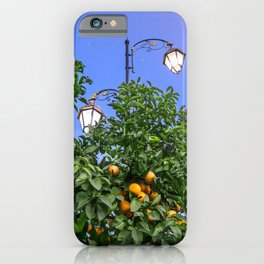 One Night Under The Stars iPhone Case