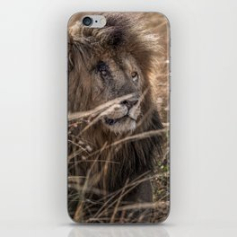 "Scarface ""Scar"" the Lion iPhone Skin"