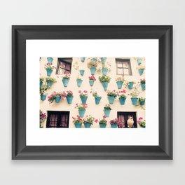 Flowerpots Framed Art Print
